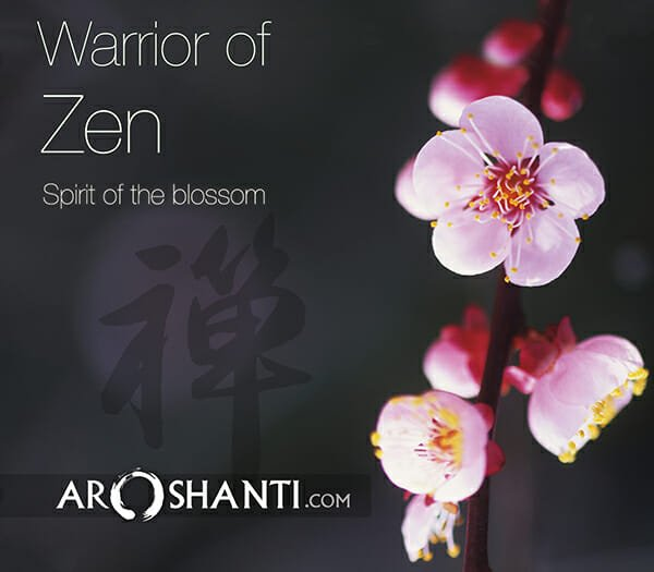 Warrior of Zen